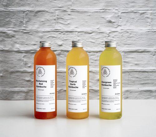 kombucha subscription triple flavour pack