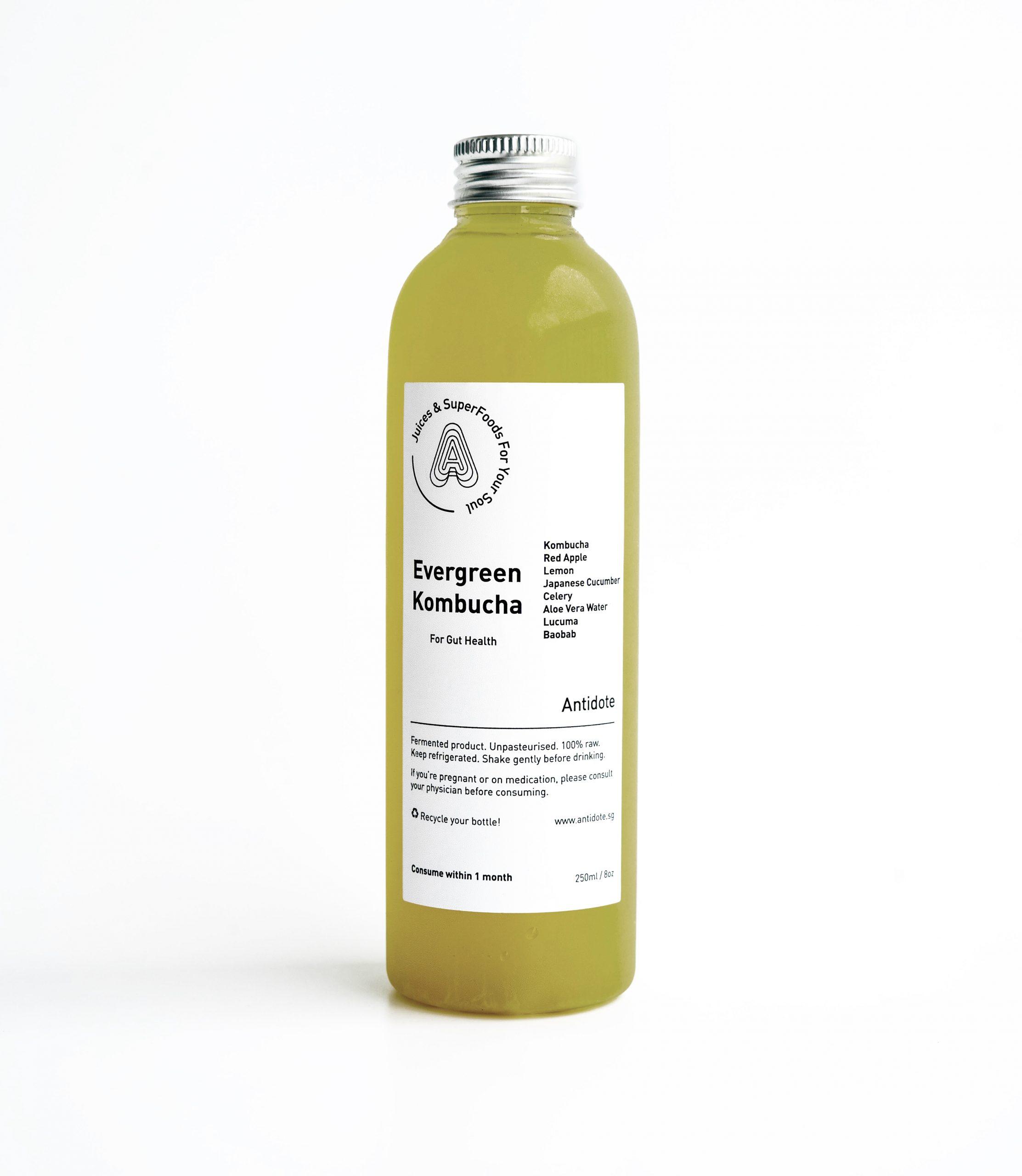 Evergreen kombucha